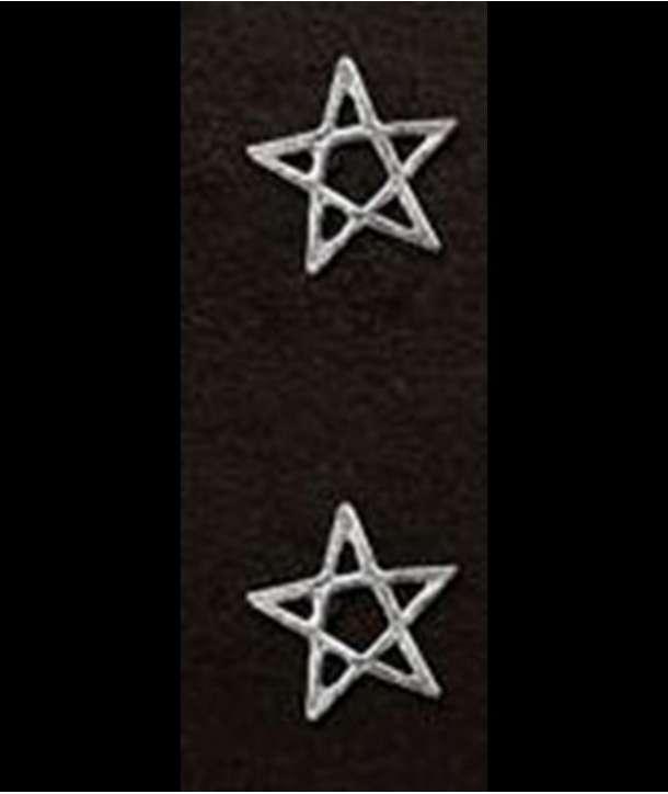 Pendientes Pentagram Plata (par)